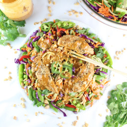 Chicken Satay Zoodle Salad Recipe