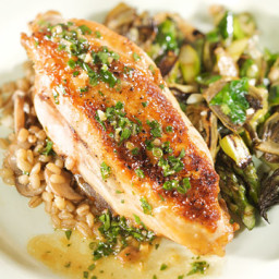 Chicken with White Wine and Herb Sauce