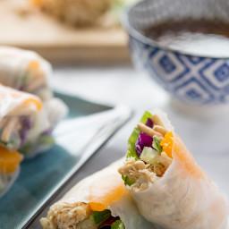 Chinese Chicken Salad Spring Rolls