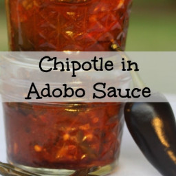 Chipotle in Adobo Sauce