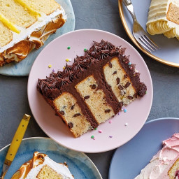Chocolate Chip Cake with Chocolate American Buttercream