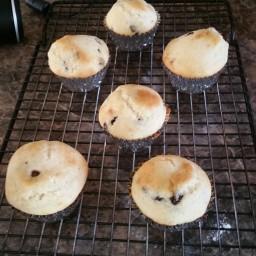 chocolate-chip-muffins-1-9d4872.jpg