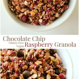 Chocolate Chip Raspberry Granola