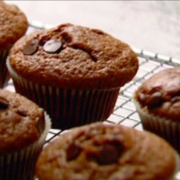 Chocolate Chocolate-Chip Muffins