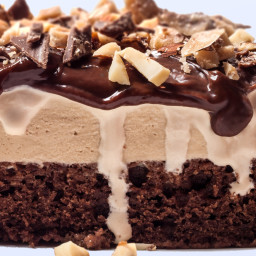 Chocolate Coffee-Almond Crunch Ice Cream Cake with Ganache