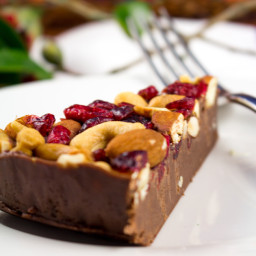 Chocolate, Cranberry, Almond and Cashew No-Bake Slice