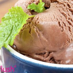 Chocolate Fat Flush Ice Cream