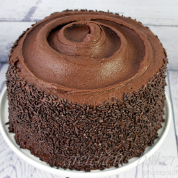 Chocolate Fudge Blackout Cake