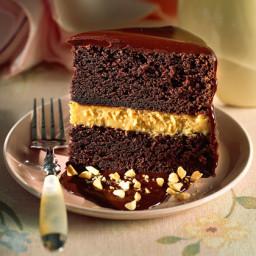 Chocolate-Peanut Butter Mousse Cake