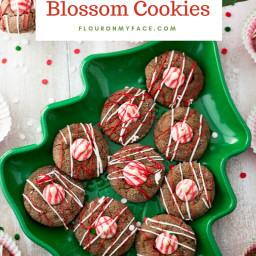 Chocolate Peppermint Blossom Cookies