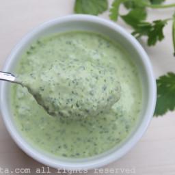 Cilantro jalapeño yogurt sauce or dip