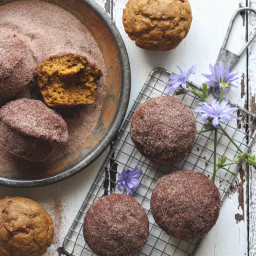 Cinnamon and Sugar Pumpkin Muffins