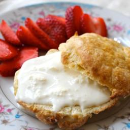 Clotted Cream and English Scones