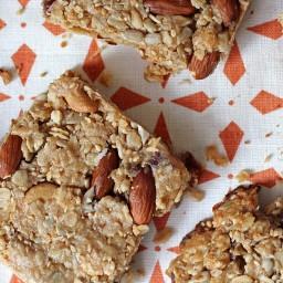 Coconut Almond Energy Bars