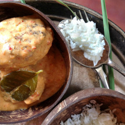 Coconut Beef w/ Thai Red Curry Paste…From Scratch