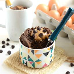 Coconut Flour Mug Cake