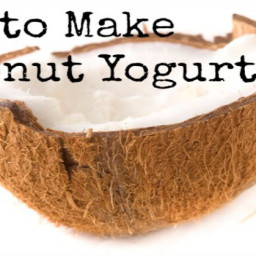 Coconut Milk Yogurt