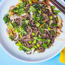 cold-soba-noodle-salad-2133205.jpg