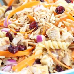 confetti-pasta-salad-with-white-balsamic-dijon-dressing-1617330.jpg