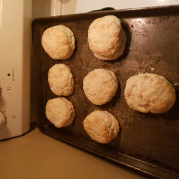 country-biscuits-59e6119d296a95a0b10ae4bc.jpg