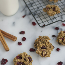 Cranberry Applesauce Oatmeal Cookies