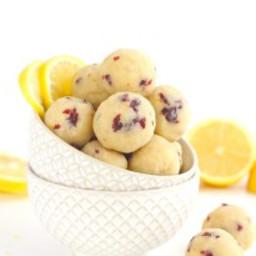 Cranberry Lemon Bites [ Paleo / Vegan ]