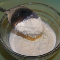 Creamy Coconut Milk Pudding