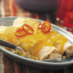 Creamy Turkey Enchiladas