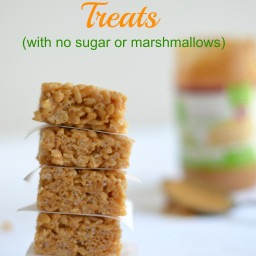 Crispy Rice Treats (Sugar Free, Gluten Free, Marshmallow Free)