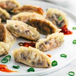 Crispy Vegetable Tofu Dumplings