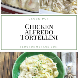 Crock Pot Creamy Chicken Alfredo Tortellini