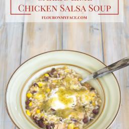 Crock Pot Garlic Lime Chicken Salsa Soup