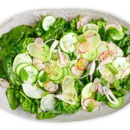 Cucumber, Kohlrabi and Spinach Salad
