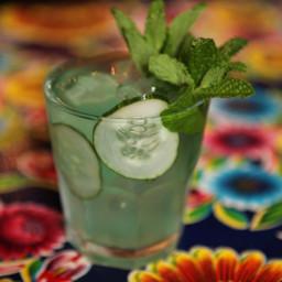 Cucumber-Vermouth Sangria