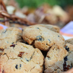 Currant, Gooseberry, Blueberry Cookies