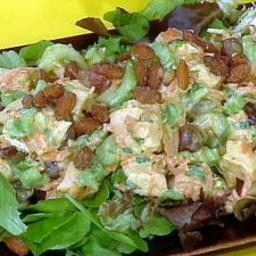 Curry-in-a-Hurry Rotisserie Chicken Salad