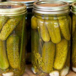 dill-pickles-5ced03.jpg