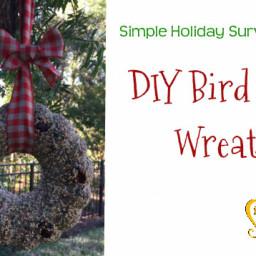 DIY Bird Seed Wreath