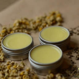 DIY Herbal Cold Sore Ointment (featuring chamomile and lemon balm)