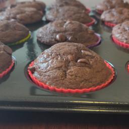 double-chocolate-muffins-d7002604556d22c493732e8a.jpg