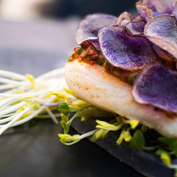 Easter Cod