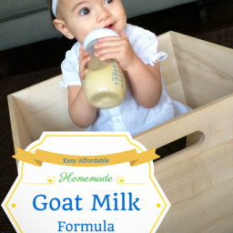 Easy Affordable Homemade Goat Milk Formula - 8 oz.