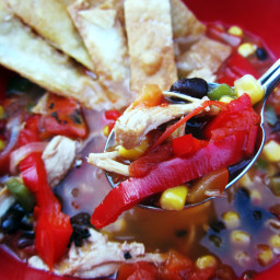Easy and Healthy Mexican Chicken Soup