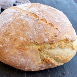 Easy Crusty Vegan Bread