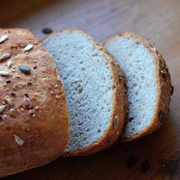 Easy Newbie Gluten Free Bread