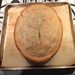 Easy Turkey/Chicken Pot Pie