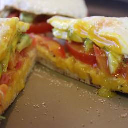 egg-tomato-avocado-delight-b23915.jpg