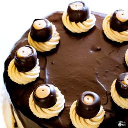 Epic Buckeye Brownie Cheesecake Cake