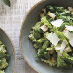 Fava Bean and Gem Lettuce Salad With Arugula Pesto and Favanade