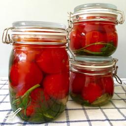 Fermented Pickled Tomatoes (солёные помидоры)